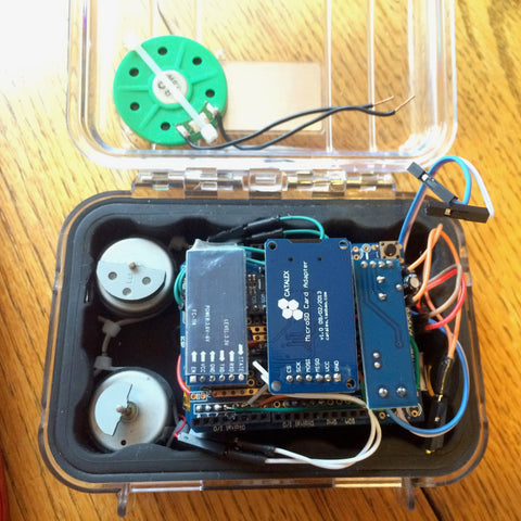 Arduino chips in a pelican case