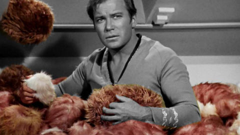 StarTrek.com article image for App-enabled Tribbles by Science Division