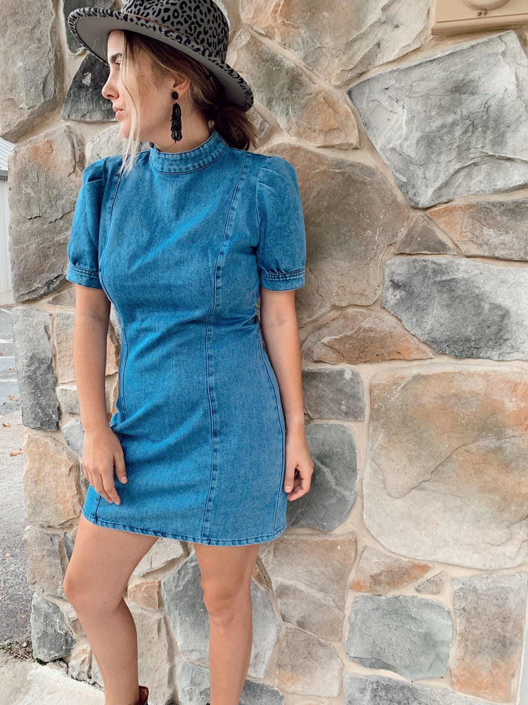 Sounds Like Fun Denim Dress