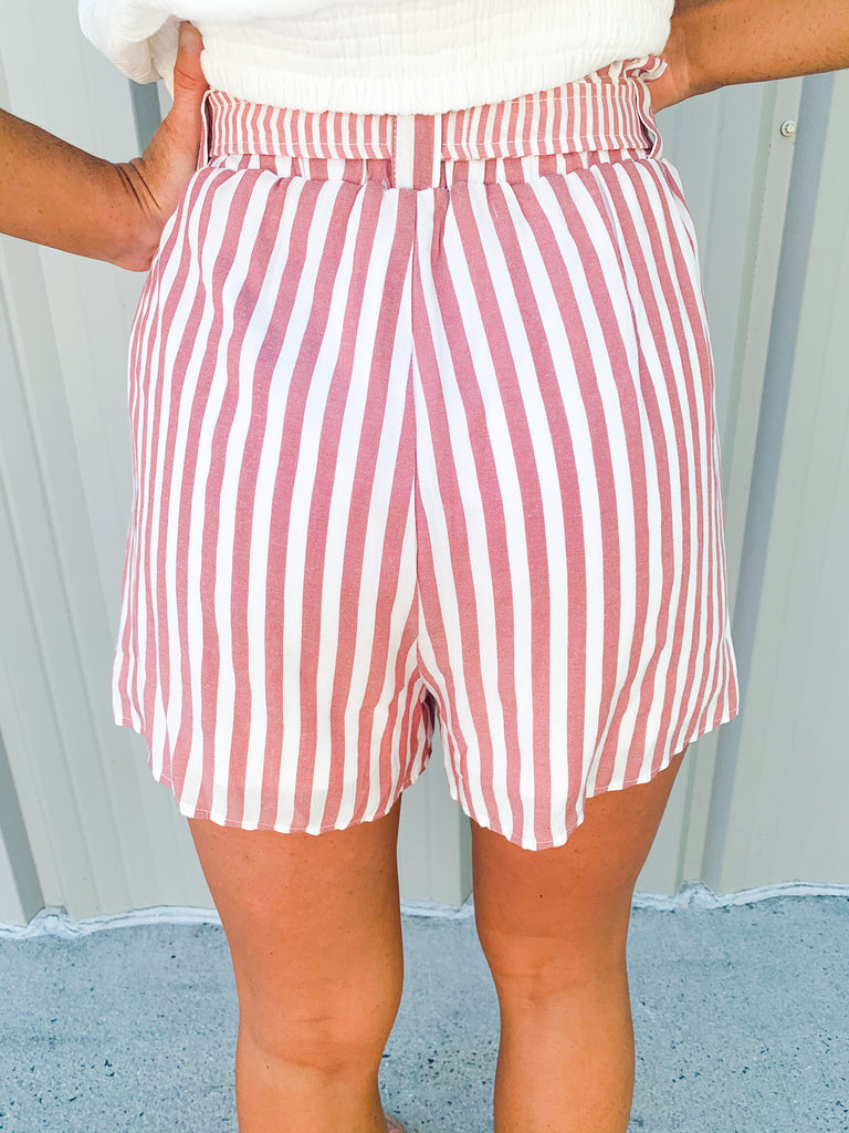 Stripes On Stripes Shorts