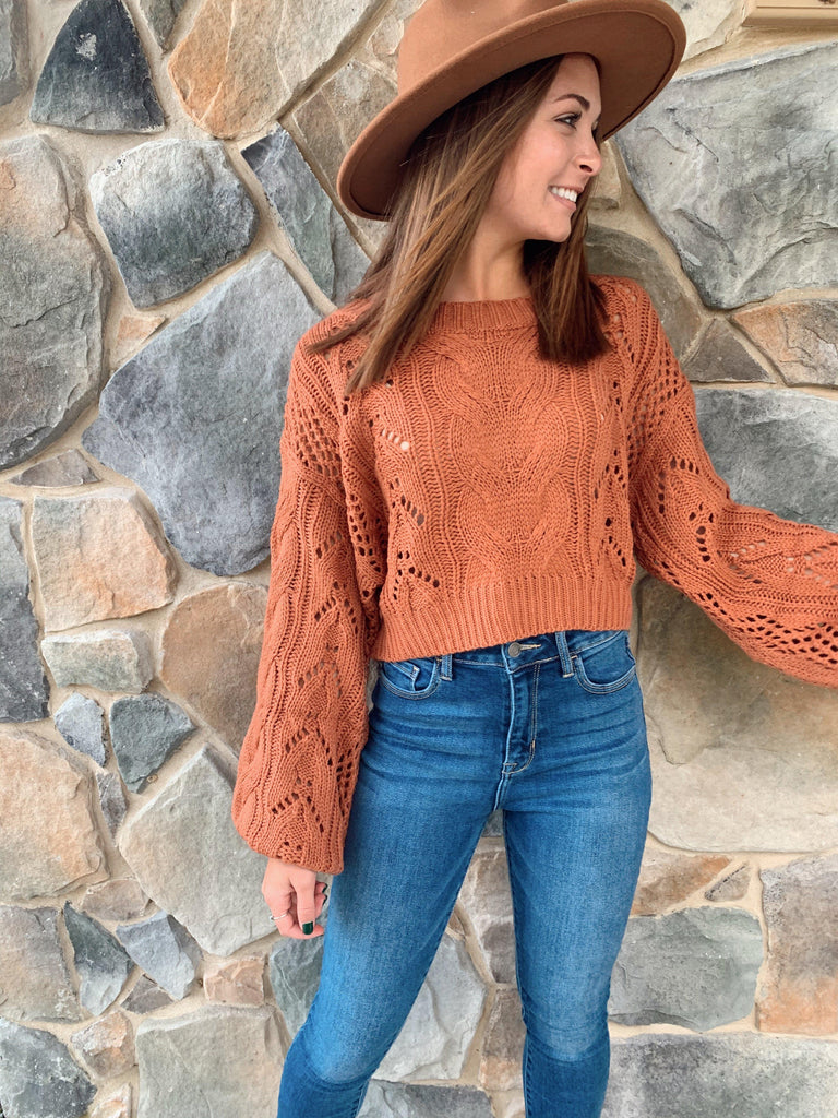 Sweater Weather Knit Crop Top - Terra Cotta