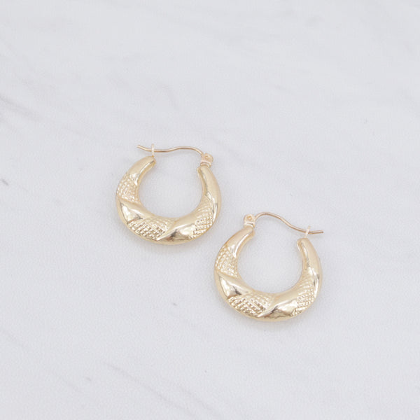 Chunky Hoop Earrings II