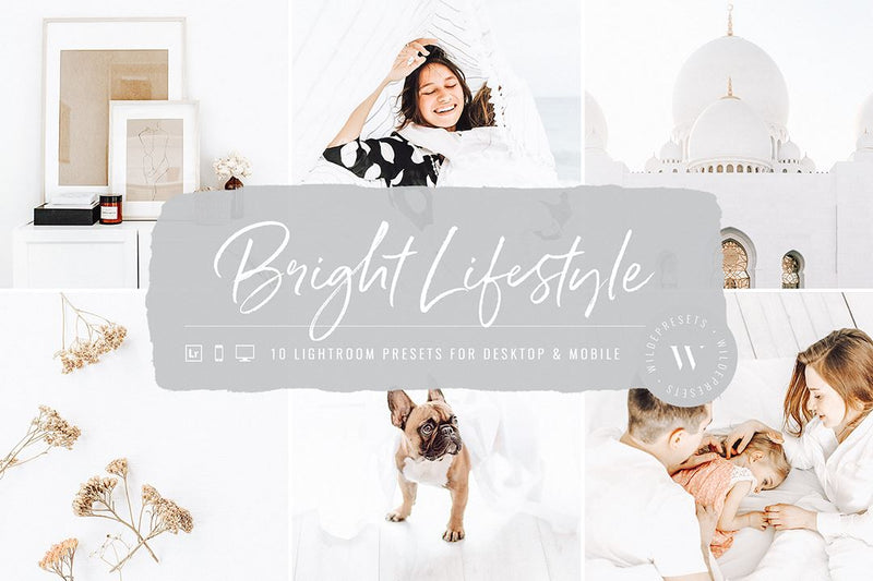 The Shop Bundle (290 Presets) Lightroom Presets wildepresets