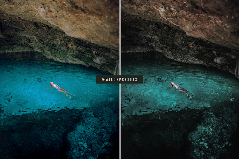 The Rainforest Collection