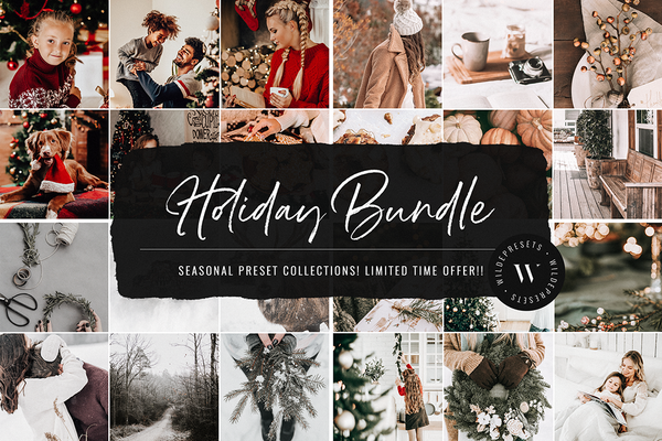 Holiday Preset Bundle (80 Presets) OVER 85% OFF!!