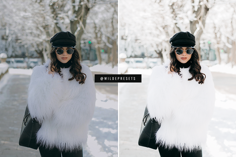 The Winter Blogger Collection