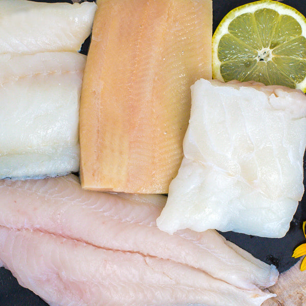 Rainbow Trout Fillet, Frozen Catfish Fillets, North Atlantic Cod and Haddock Sampler