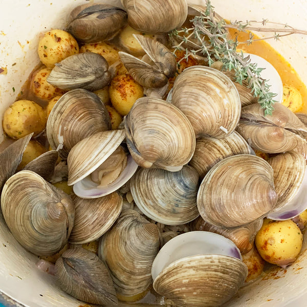 Cedar Key Top Neck Clams