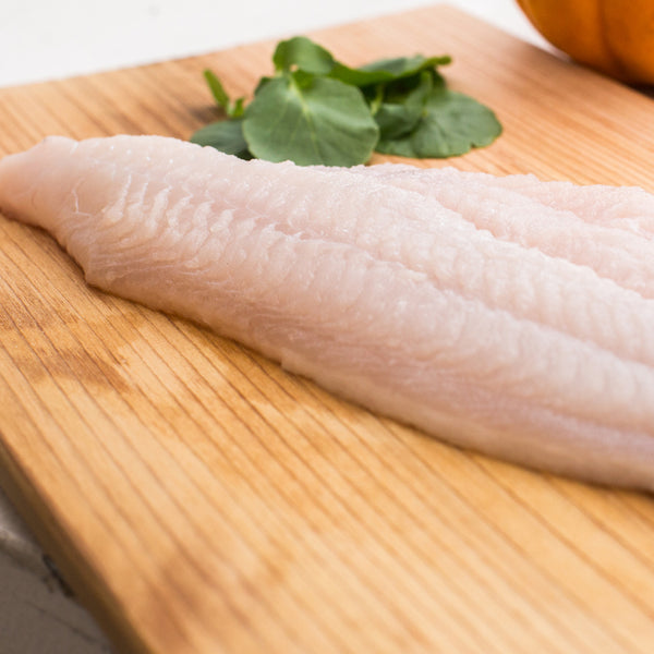 Fresh Catfish Fillet