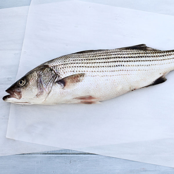 Whole Rockfish (Striped Bass)