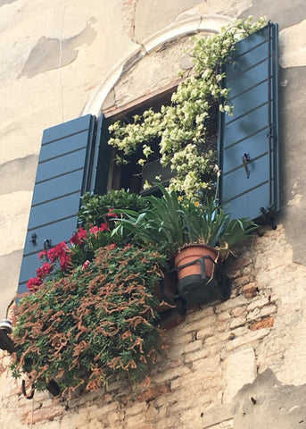 """Venetian Window Box"" - Framed Fine Art Premier Lustre Photo Print (9.5""x11.5"")"