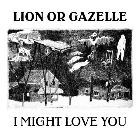 Lion Or Gazelle: I Might Love You