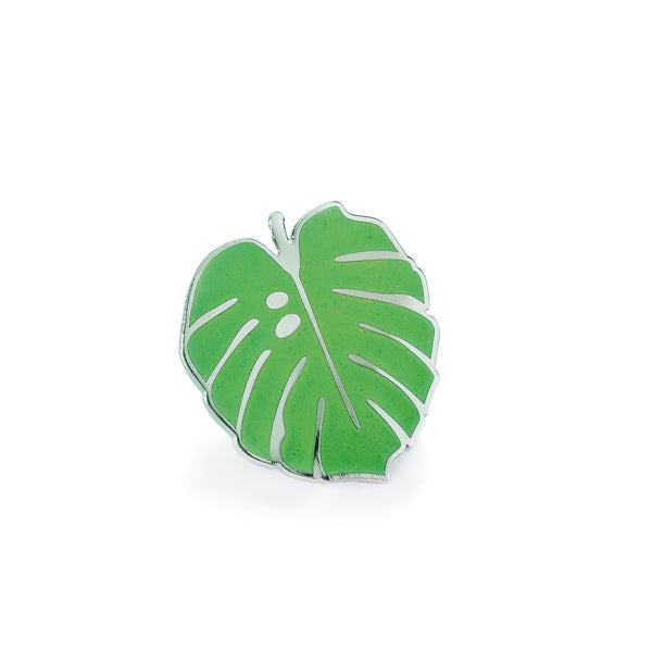 Pintastic Little Monstera