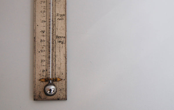 William IV Morocce Leather Cased Travelling Thermometer by Troughton & Simms London