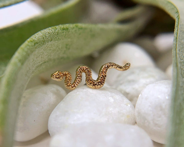 Yellow gold snake