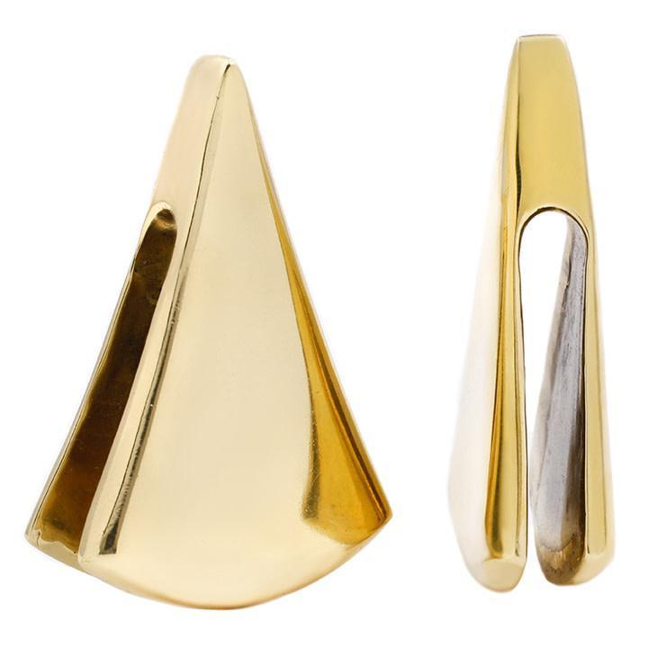 Modern Brass Ear Weights