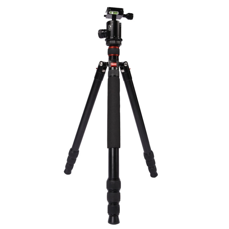 Triopo MT-2804C Adjustable Portable Aluminum Tripod (Gold) with NB-2S Ball Head (Black) for Canon Nikon Sony DSLR Camera - star-produkte.myshopify.com