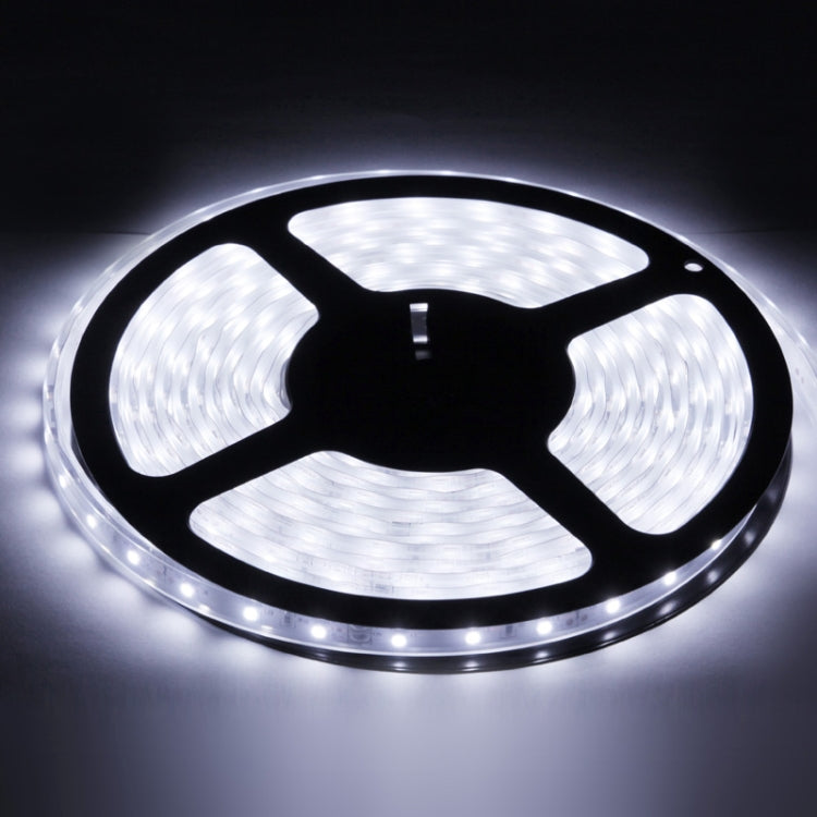 Casing Waterproof Rope Light, Length: 5m, White Light 6000-6500K 3528 SMD LED, 60 LED/m - star-produkte.myshopify.com