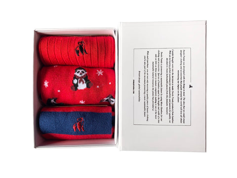 Mens Red Bamboo Sock Gift Box