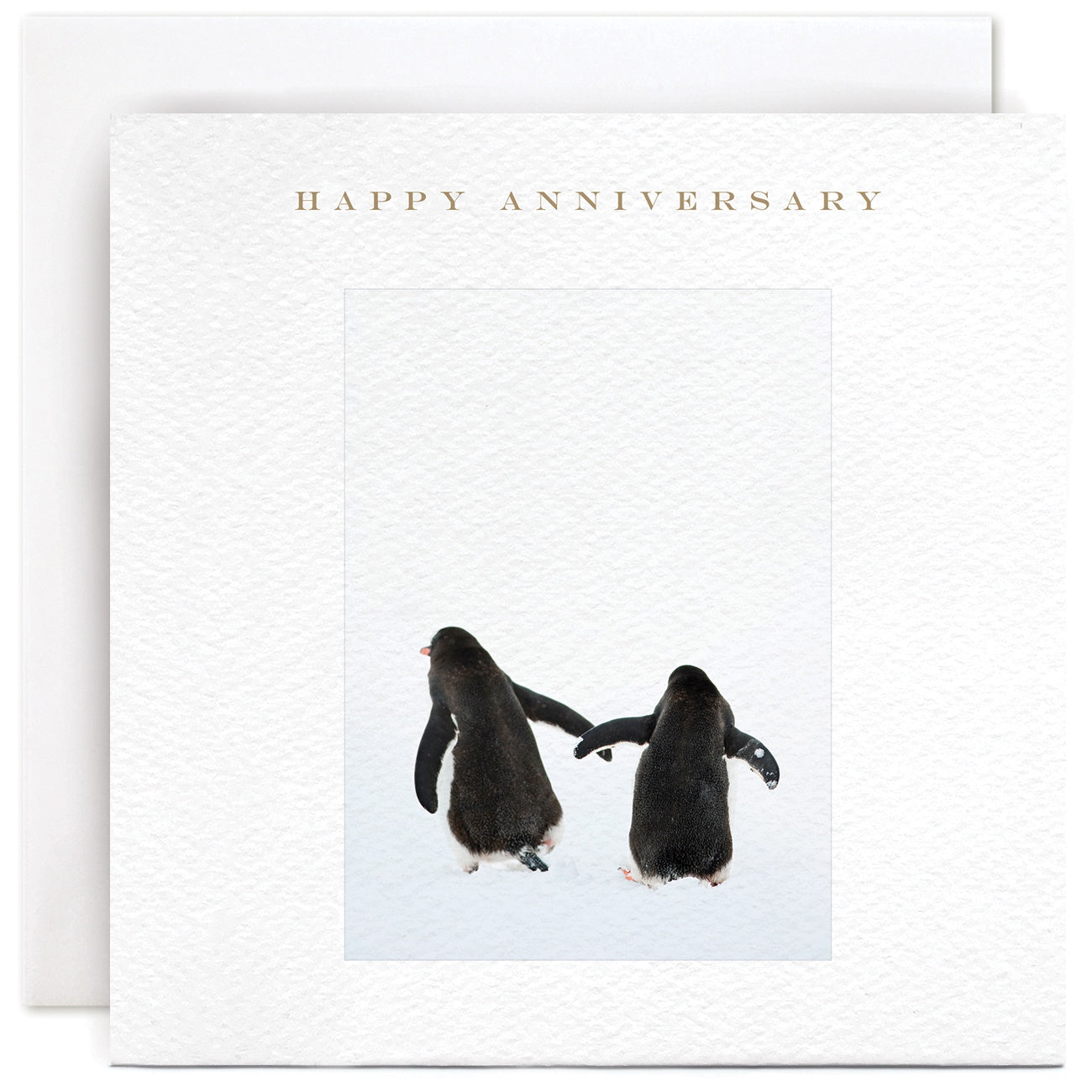 Happy Anniversay - Penguins hands