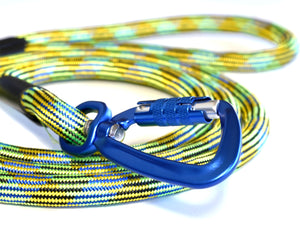 Blue locking carabiner on green leash for your dog.  Safe leash for your unique, adventurous dog.