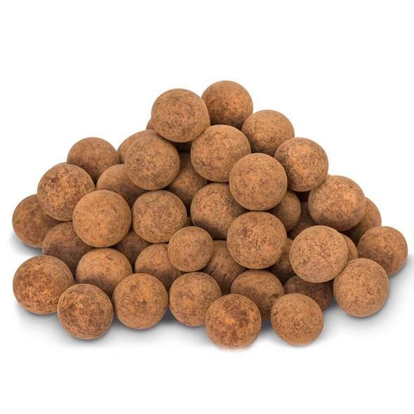 The Raw Chocolate Company Vegan & Organic Salted Chocolate Hazelnuts