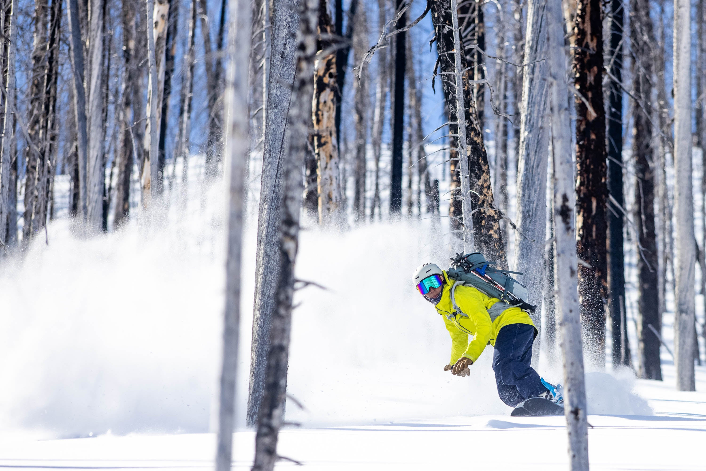 Latina AAPI athlete snowboards through a burned forest, remnants of human impact.