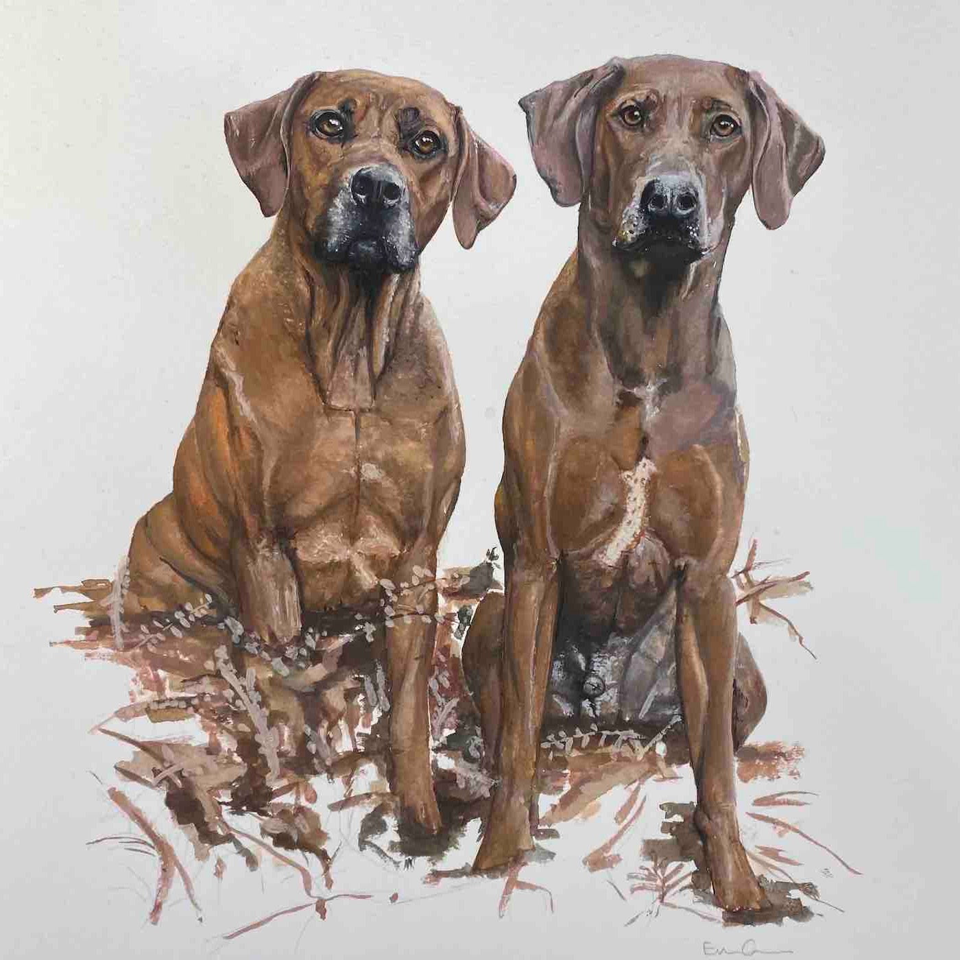 Painting of two Rhodesian Ridgeback copper coloured dogs facing forward.