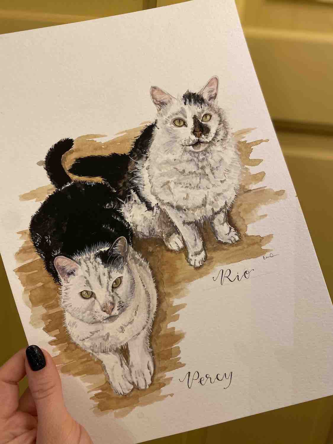 Detailed watercolour painting of two white and black cats. Painting is held up by a hand on the left side against a mustard yellow background.
