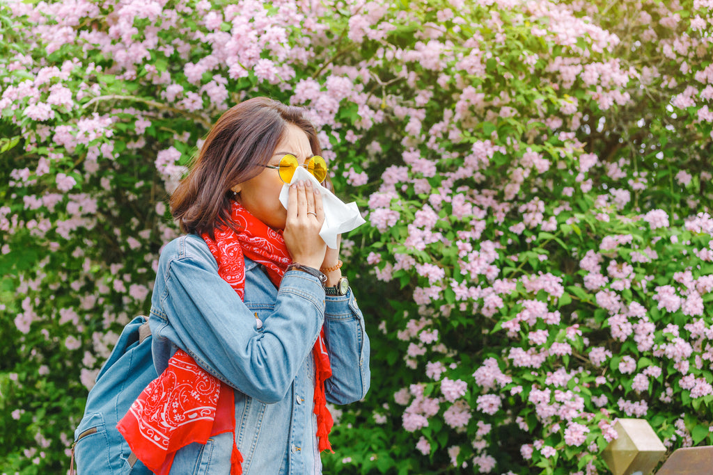 How Do Immune System and Allergies work?