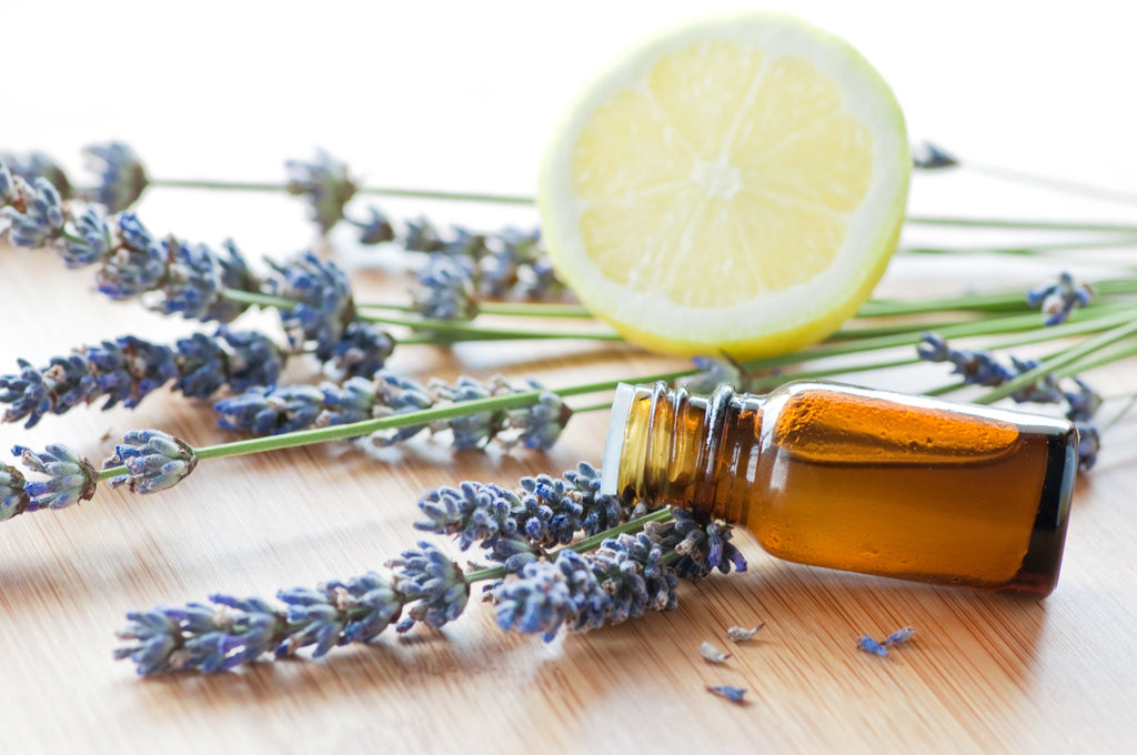 16 Best Essential Oils for the Immune System