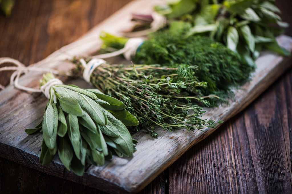 10 Best Herbs to Boost the Immune System