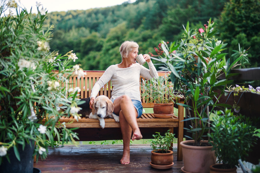 A senior woman with a dog and coffee sitting outdoors on a terrace in summer