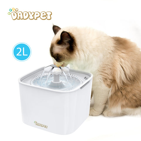 Dadypet Pet Dog Water Fountain Electric Water Bowl Auto Cycle with Filter 2L Cat Water Fountain 2W Pump for Cats Dogs Birds
