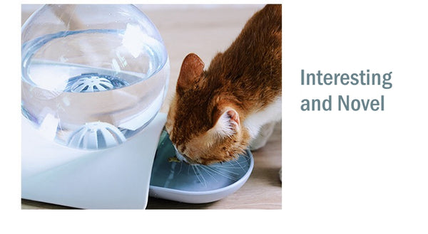 Bubble Automatic Cat Water Fountain For Pets Water Dispenser Large Drinking Bowl Cat Drink 2.8L No Electricity