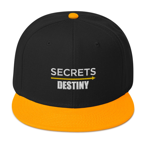 Snapback Secrets Destiny Hat