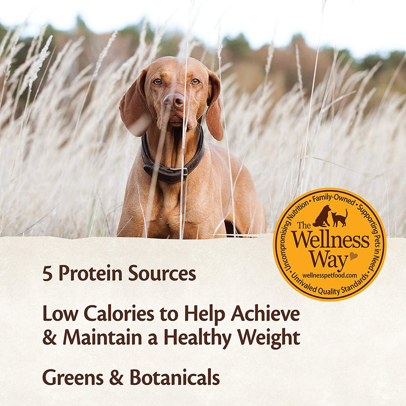 Wellness CORE Weight Management Formula Grain-Free Canned Dog Food