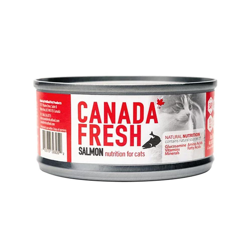 Salmon Wet Cat Food