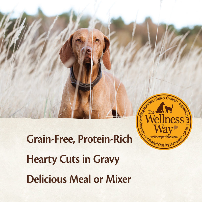 Wellness CORE Hearty Cuts in Gravy Beef & Venison Recipe Dog Food