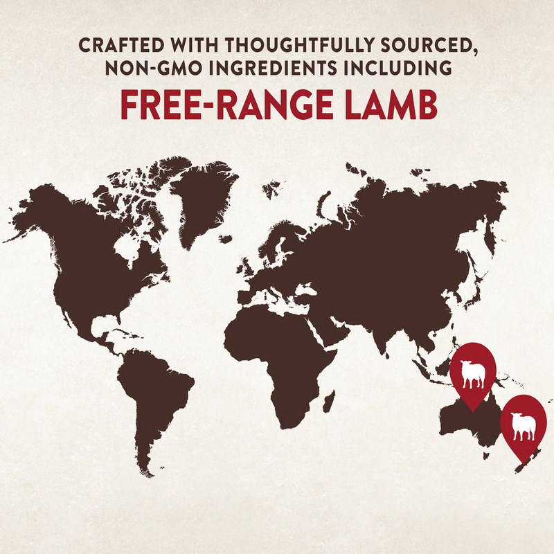 CORE SIX Free Range Lamb Grain Free Dry Dog Food