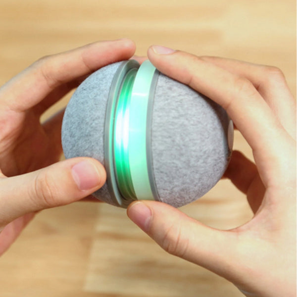 Wicked Ball Cat Toy