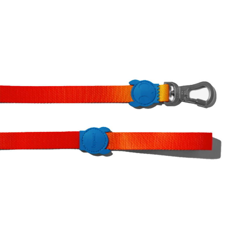 Gradients Solaris Leash