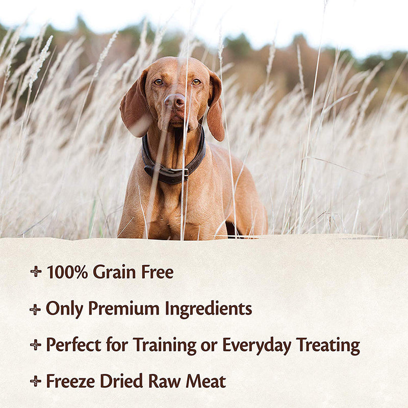 CORE 100% Salmon Freeze-Dried Raw Treats