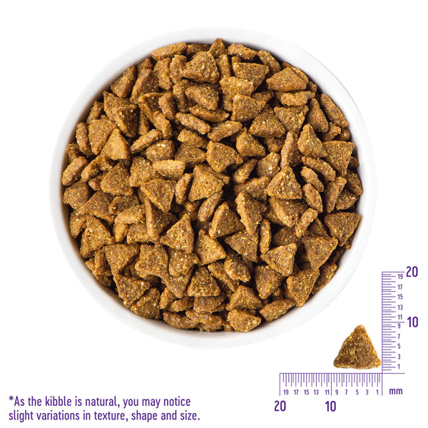 Simple Limited Ingredient Small Breed Salmon & Potato Dry Dog Food4 lbs