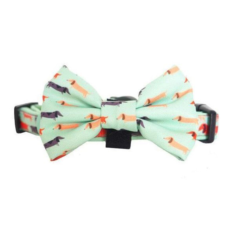 Bow Tie Collar - Snag Pack Dog Collar