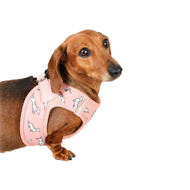 Vegan Leather Step In Dog Harness - The Twiggy (Blush)