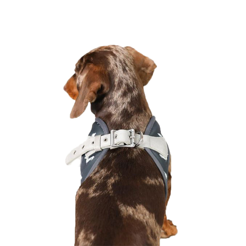 Vegan Leather Step In Dog Harness - The Twiggy (Charcoal)