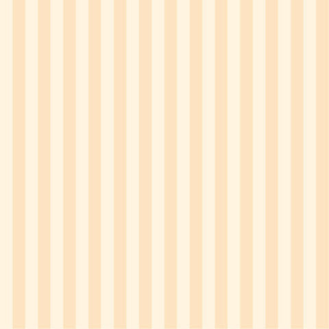 DS Staple Stripe Beige Fabric