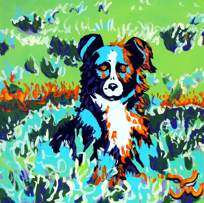 Border Collie Original Painting by Dan Howard