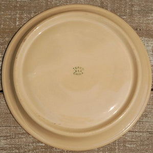 Tepco Broken Wagon Wheel China Divided Plates 10 pc set